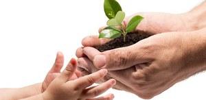 Consegna degli alberi ai nuovi nati