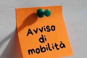Avvisi di mobilità esterna